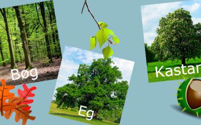 Tæt på naturen med h5p